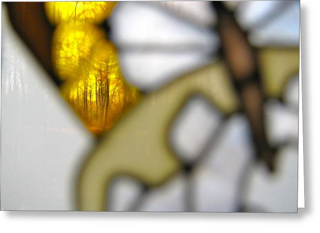 Butterfly Forest  B Greeting Card by Debra     Vatalaro