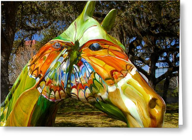 Butterfly Horse Ocala Florida Greeting Card by David Lee Thompson