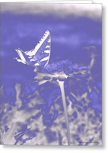 Butterfly In The Mist Greeting Card