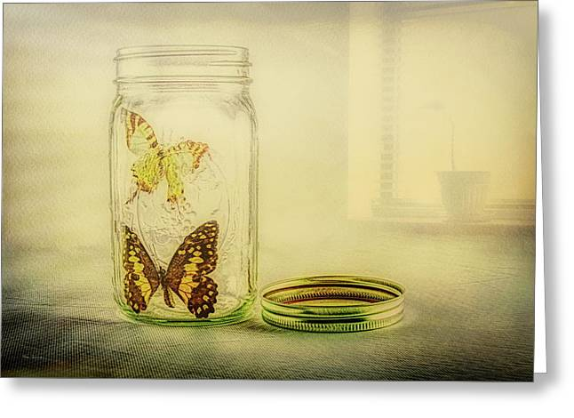Butterfly Jar Greeting Card by Bob Orsillo