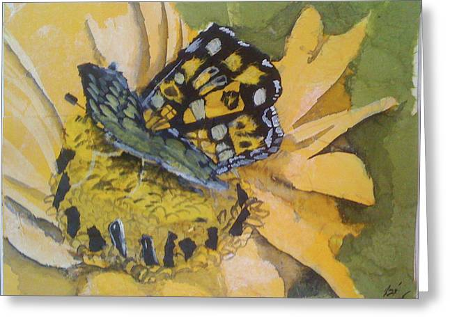 Butterfly Greeting Card by Julie Morrison