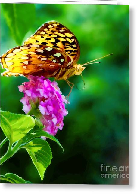 Butterfly Landing Greeting Card