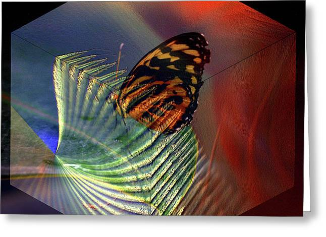 Greeting Card featuring the photograph Butterfly Morphing by Irma BACKELANT GALLERIES