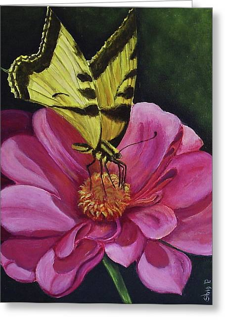 Butterfly On A Pink Daisy Greeting Card by Silvia Philippsohn