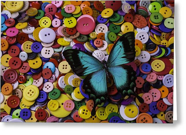 Butterfly On Buttons Greeting Card by Garry Gay