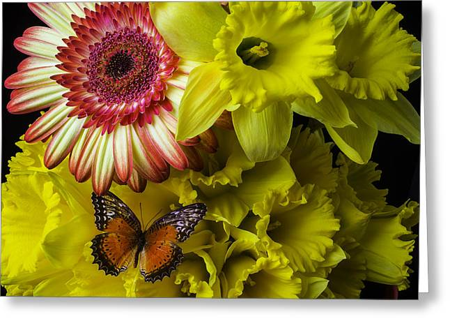 Butterfly On Daffodils Greeting Card