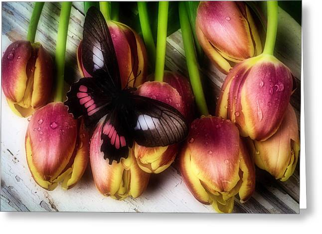 Butterfly On Dewy Tulips Greeting Card by Garry Gay