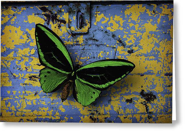 Butterfly On Old Tool Box Greeting Card by Garry Gay