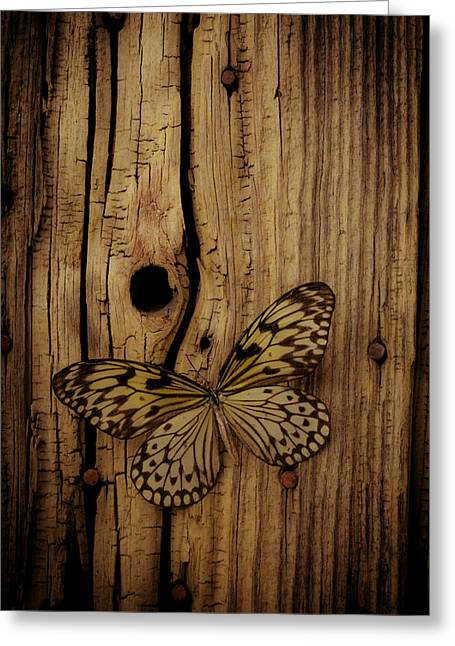 Butterfly On Old Wood Wall Greeting Card by Garry Gay
