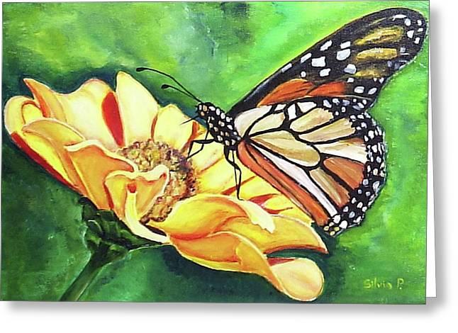 Butterfly On Yellow Daisy Greeting Card by Silvia Philippsohn