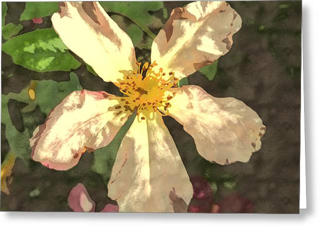 Butterfly Rose Greeting Card by Amy Jo Garner