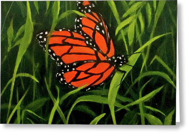 Butterfly Greeting Card by Roseann Gilmore