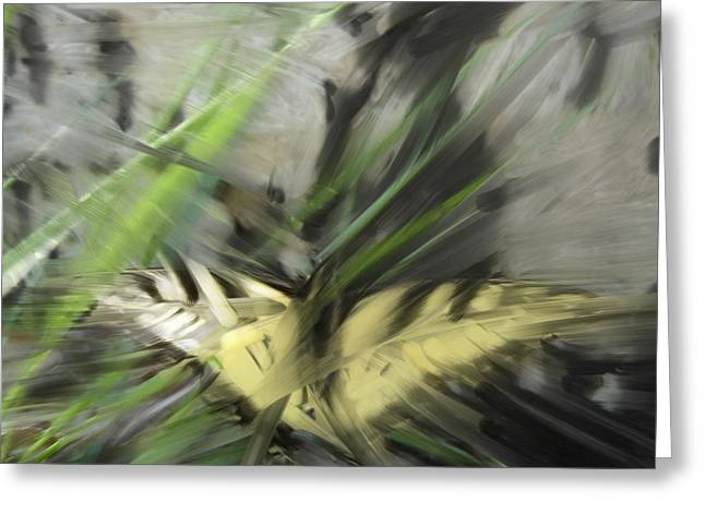 Butterfly Greeting Card by Ryan Vaal