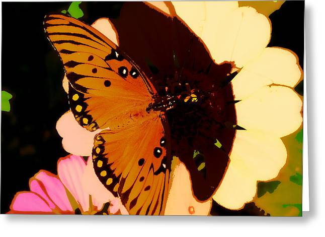 Butterfly Shadows Greeting Card by Dottie Dees