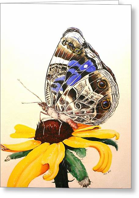 Butterfly Sun Greeting Card