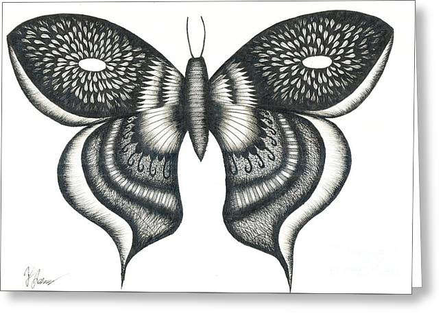 Burst Butterfly Drawing Greeting Card