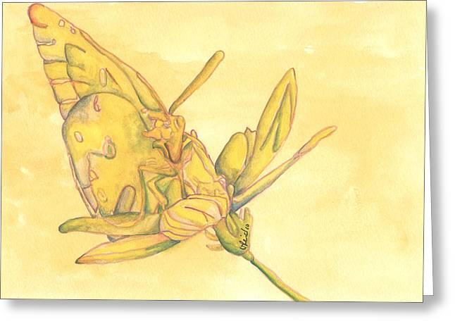 Butterfly  Greeting Card by Versel Reid