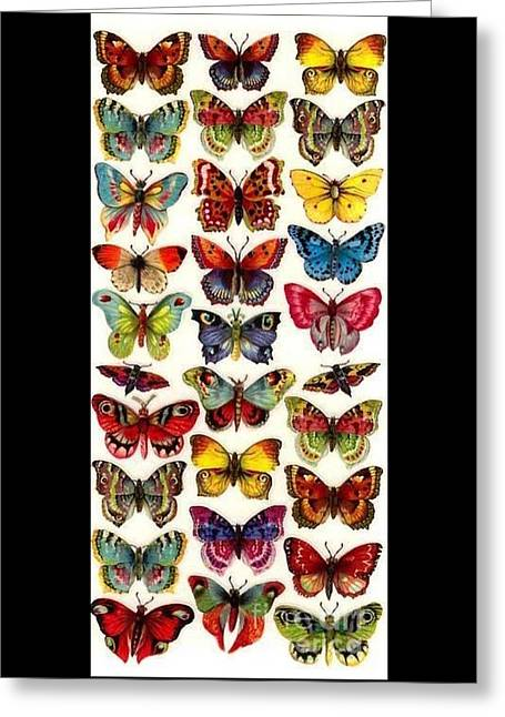 Butterflys Greeting Card by Pg Reproductions