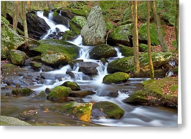 Buttermilk Falls Cascade Greeting Card by David Freuthal