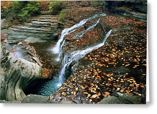Buttermilk Falls Creek Greeting Card