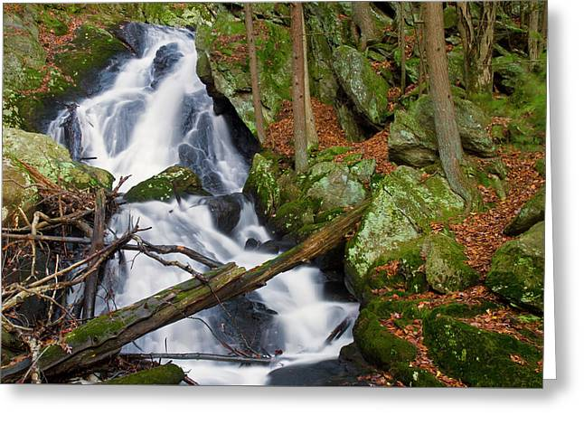 Buttermilk Falls Greeting Card by David Freuthal