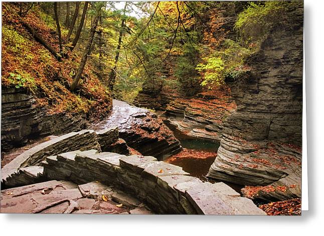 Buttermilk Falls Gorge Greeting Card by Jessica Jenney