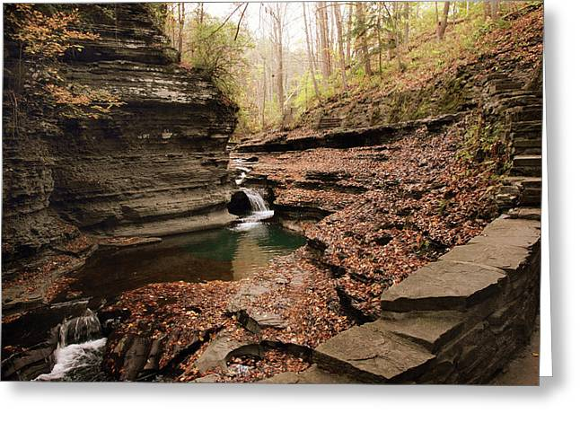 Buttermilk Falls Greeting Card by Jessica Jenney