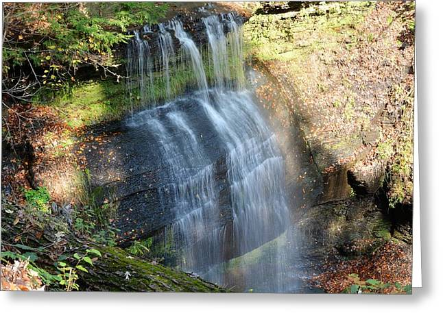 Buttermilk Falls Natural Area Greeting Card by Shelley Smith