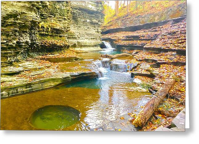 Buttermilk Falls Pathways  Greeting Card by Patrick O'Leary