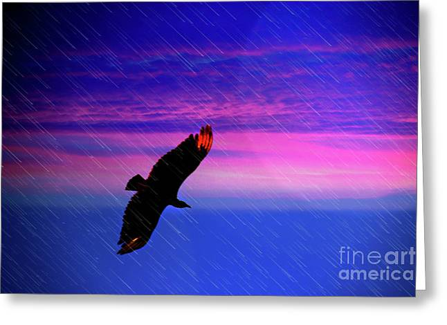 Buzzard In The Rain Greeting Card by Al Bourassa