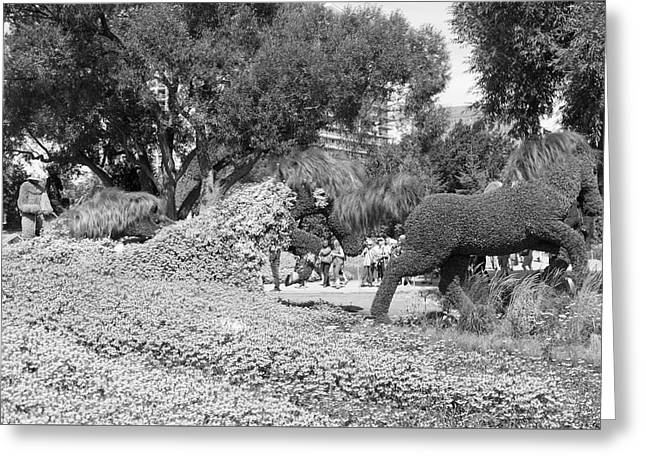 Bw Of Mosaicanada Scenery Greeting Card