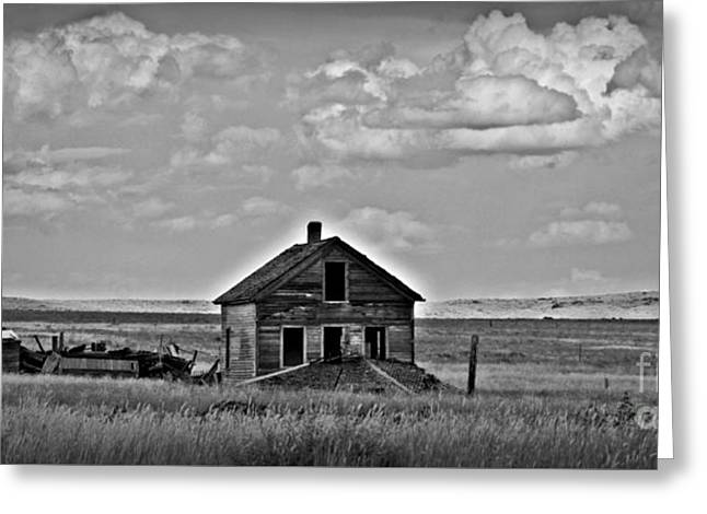 Bw Vananda Homestead Greeting Card by Chalet Roome-Rigdon