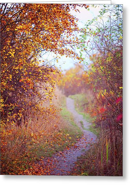 By Autumn Path 2 Greeting Card by Jenny Rainbow