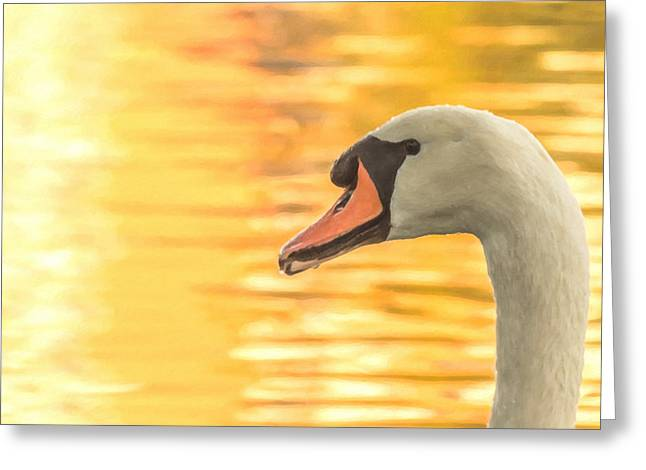 Greeting Card featuring the photograph By Dawn's Light by Garvin Hunter