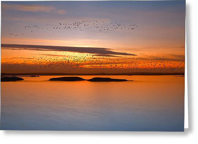 By Sunset Greeting Card by Piotr Krol (bax)