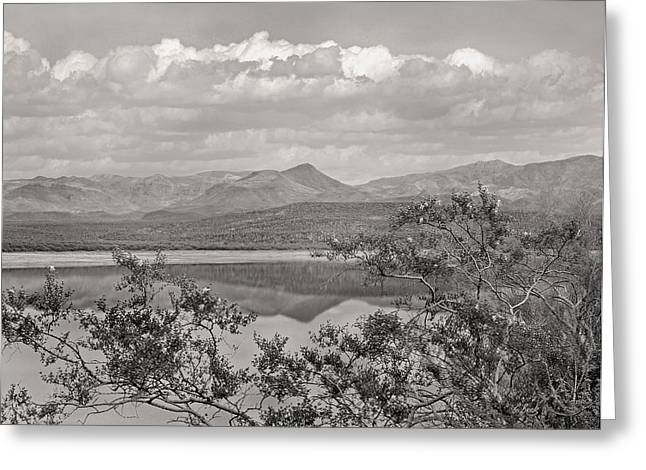 By The Lake Monochrome Greeting Card