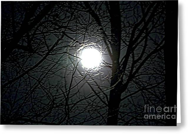 March Moon Greeting Cards - By the Light of the Perigee Moon Greeting Card by Christine Segalas