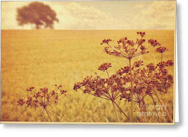 Greeting Card featuring the photograph By The Side Of The Wheat Field by Lyn Randle