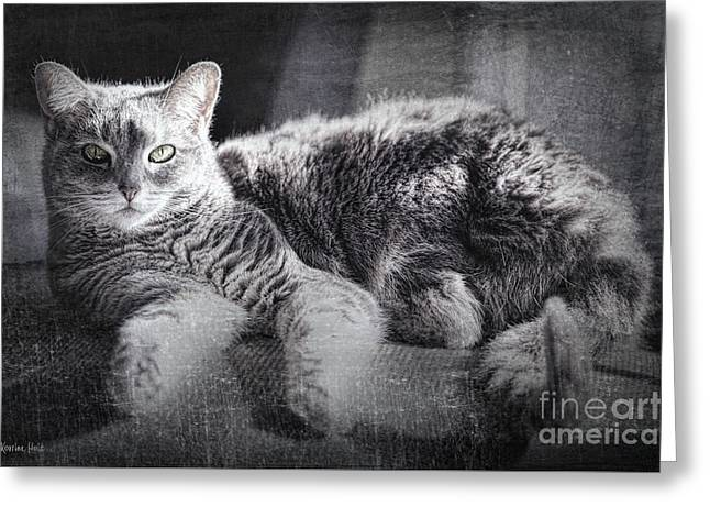 By The Window Greeting Card by Korrine Holt