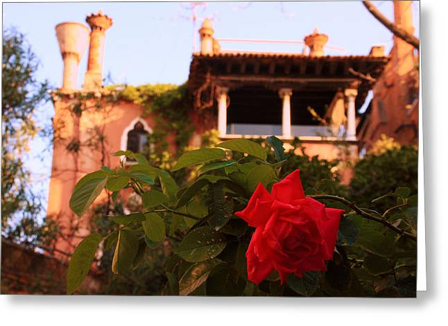 Ca' Dario In Venice With Rose Greeting Card by Michael Henderson