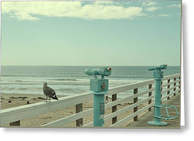 Ca Peepers Greeting Card by JAMART Photography