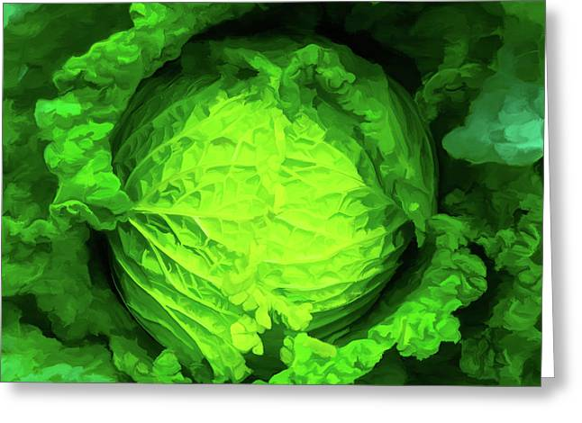 Cabbage 02 Greeting Card by Wally Hampton