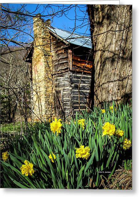 Cabin Spring Greeting Card