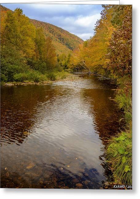 Cabot Trail Autumn 2015 Greeting Card