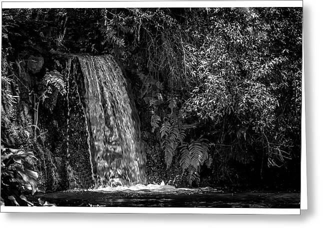 Cachoeira-parque Estadual-campos Do Jordao-sp Greeting Card