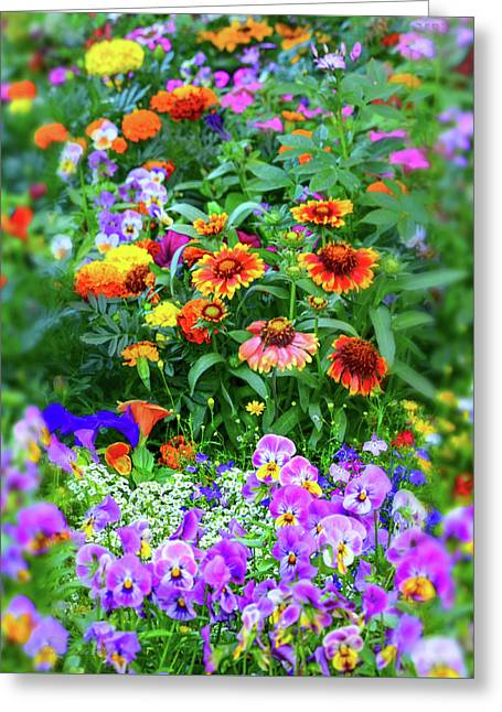 Summer Cacophony Of Color Greeting Card by Brian Tada