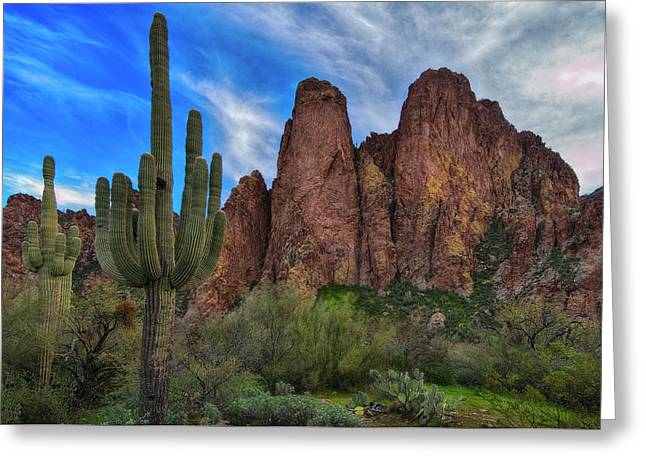 Greeting Card featuring the photograph Cactus And Goldfield Mountains by Dave Dilli