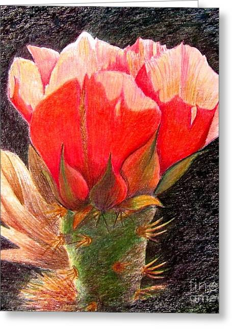 Cactus Cutie Greeting Card by Marilyn Smith