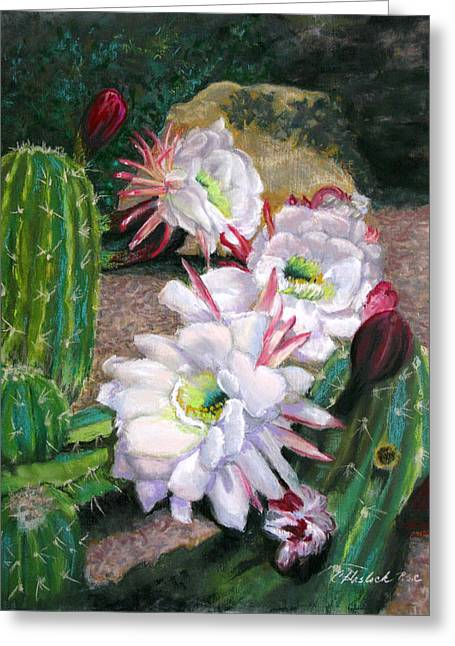 Cactus Flower Greeting Card by Carole Haslock