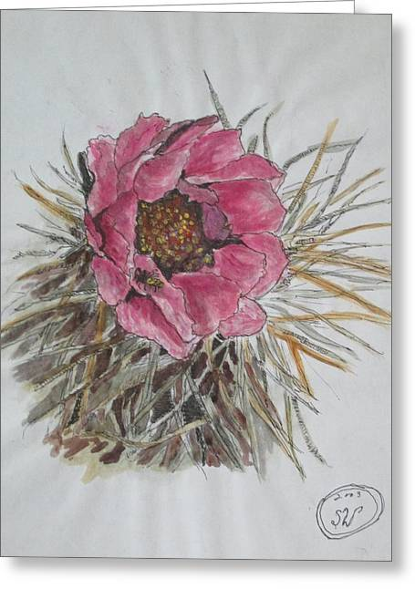 Cactus Joy Greeting Card by Sharyn Winters